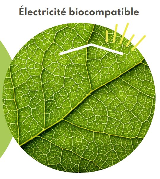 Electricite Biocompatible P