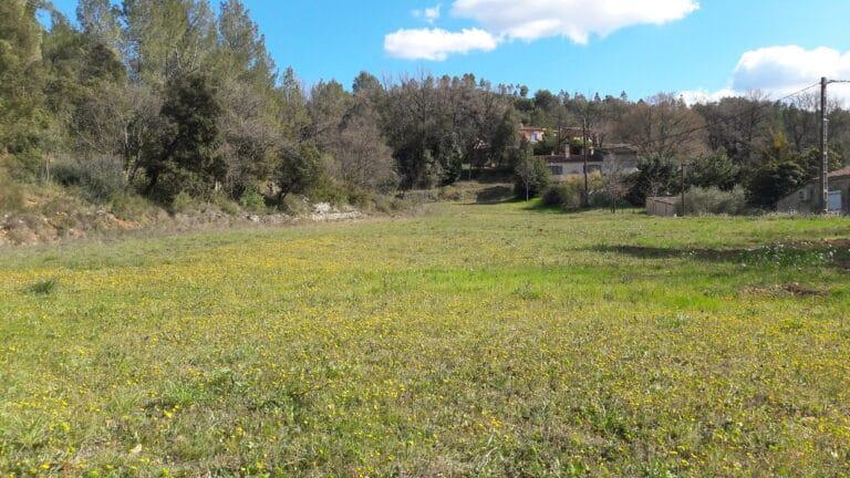 Photo terrain 2