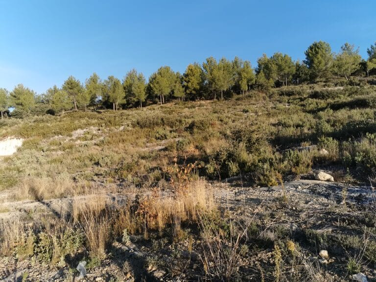 terrain a bâtir rognes