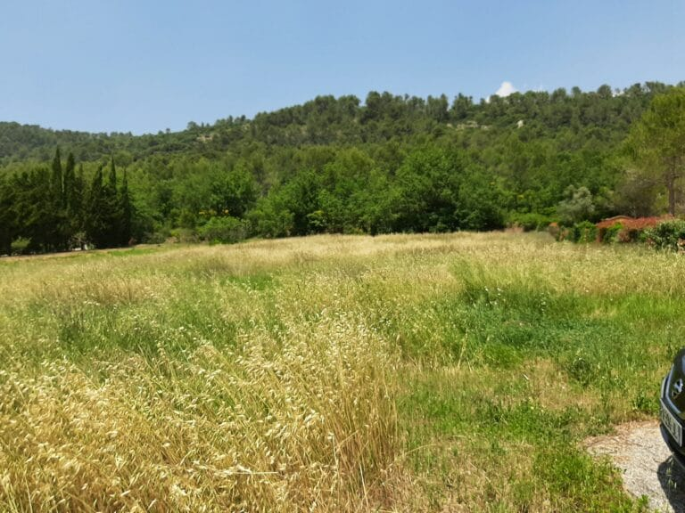 terrain Camps la source 2650 m2 environ